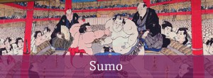 Cultural Experience - Sumo
