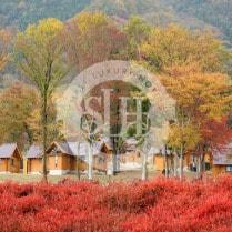 L'Hotel du Lac Shiga Japan and Luxury Travel Specialist Luxury Travel to Japan Izumi Ogawa Virtuoso Travel Agent