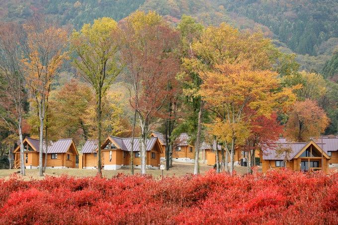 L'Hotel du Lac Shiga Fall Autumn Japan and Luxury Travel Specialist Luxury Travel to Japan Izumi Ogawa Travel Agent